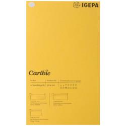 Spalvotas popierius Caribic Nr.39 170g/m2 65x92 cm (garstyčių sp)