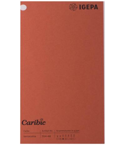 Spalvotas  popierius  Caribic Nr.48 170g/m2 65x92 (terakota) 125 lapų pakuotėje
