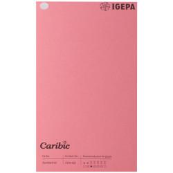 Spalvotas popierius Caribic Nr.62 170g/m2 65x92 cm (rožinė sp.)