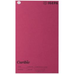 Spalvotas popierius Caribic Nr.66 170g/m2 65x92 cm (t.avietinė sp.)