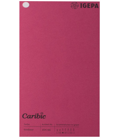 Spalvotas  popierius  Caribic Nr.66 170g/m2 65x92 (t.avietinė sp.) 125 lapų pakuotėje