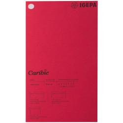 Spalvotas popierius Caribic Nr.67 170g/m2 65x92 cm (t.raudona sp.)
