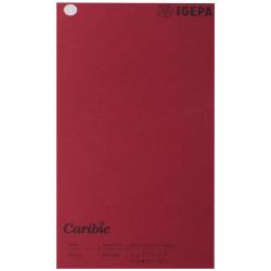 Spalvotas popierius Caribic Nr.69 170g/m2 65x92 cm (vyšninė)