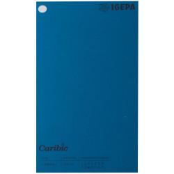 Spalvotas popierius Caribic Nr.74 170g/m2 65x92 cm (t.mėlyna)