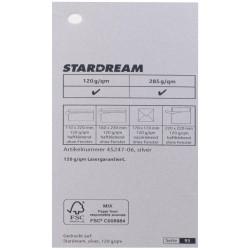 Metalizuotas popierius Stardream silver 285g/m2 72x102 cm sidabro sp.